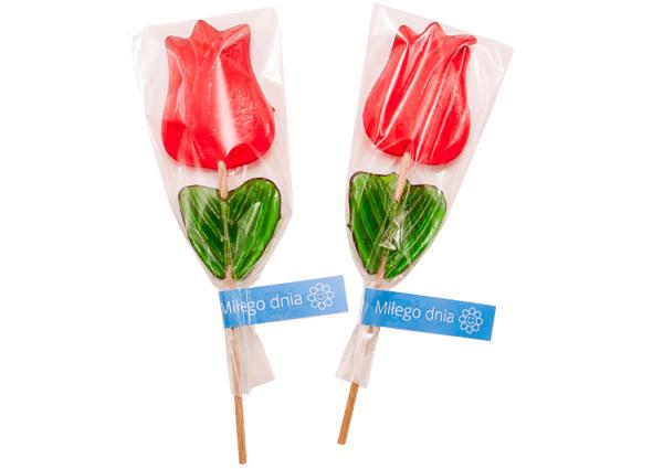 Tulip Lollipop