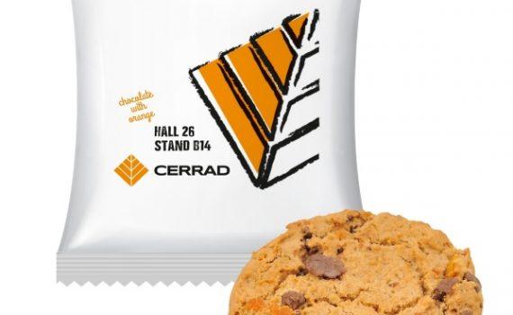 Oatmeal Cookie with orange and dark chocolate