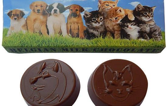 Chocolate 17g in a box -Animals