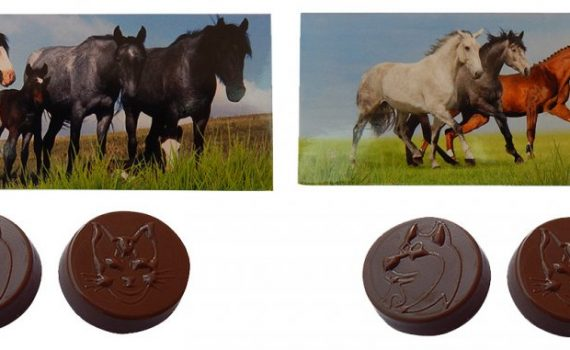 Chocolate 17g in a box - Horses